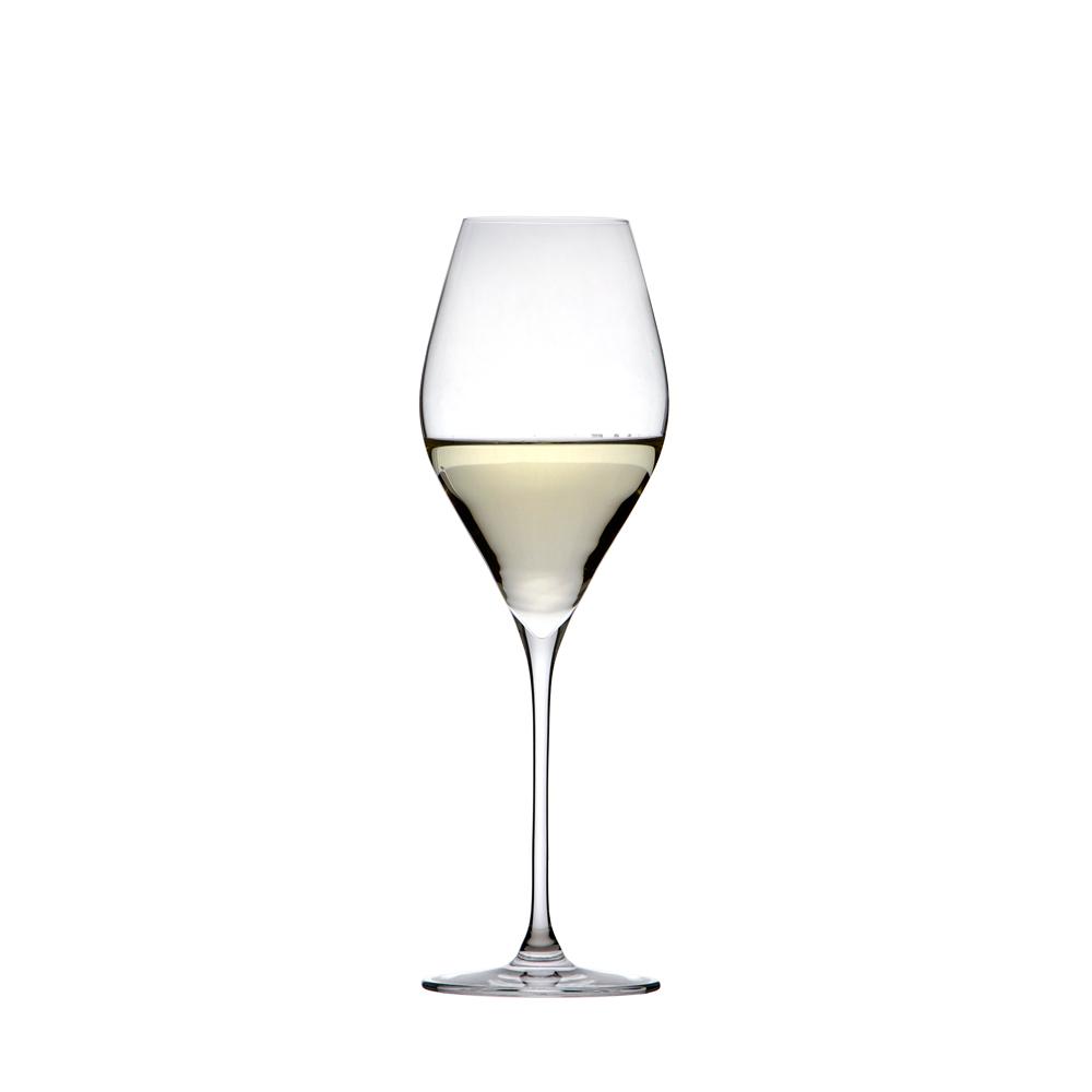 木村硝子店 ツルシリーズ15OZワイン
